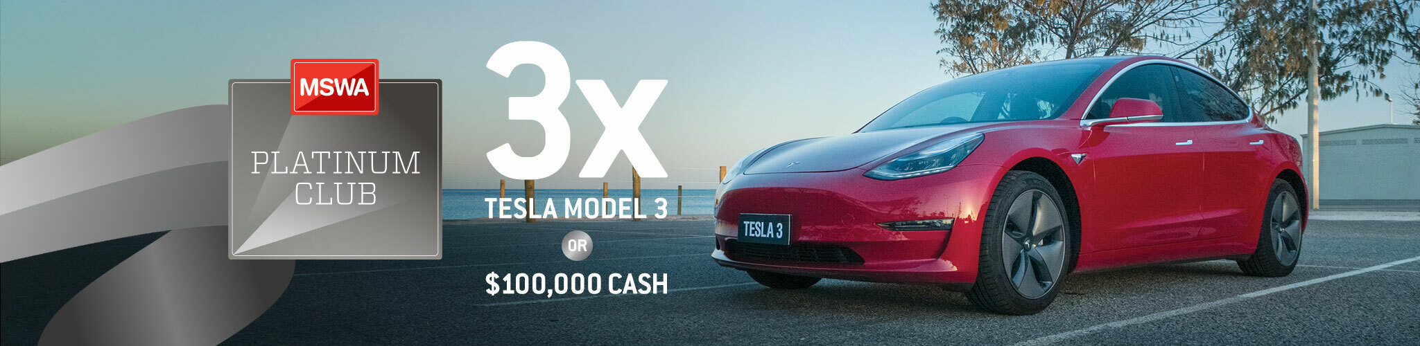 Join the MSWA Platinum Club and you could win 1 of 3 Tesla 3s or $100,000 CASH!